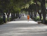 Avinguda Al Vedat